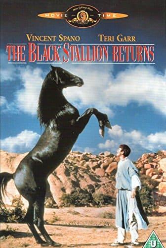 film sui cavalli il ritorno di Black Stallion