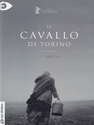 film sui cavalli il cavallo di Torino